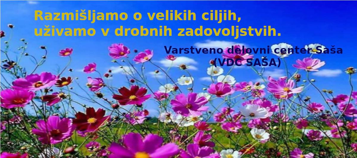 VDC Saša
